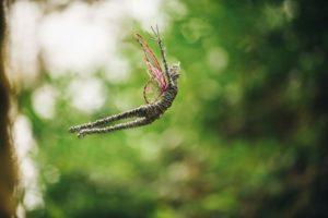 Fairy wire sculpture rachel ducker art